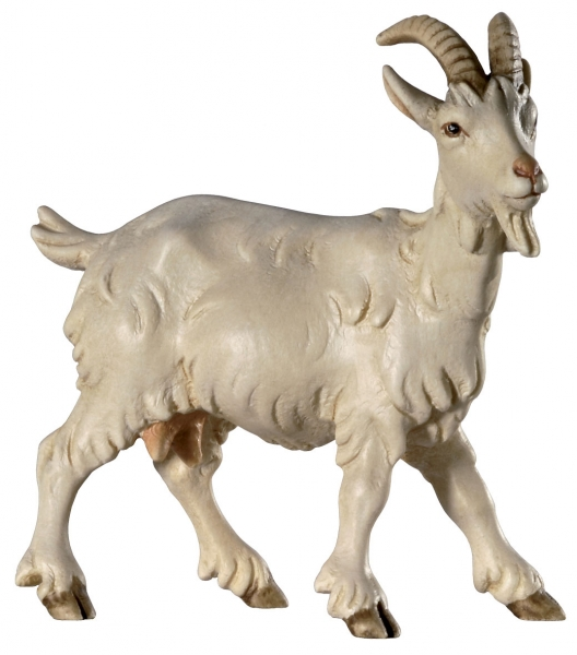 Goat Head to right